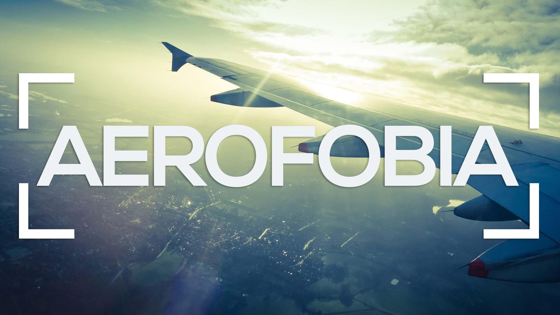 Se muestra el ala de un avión y la palabra aerofobia