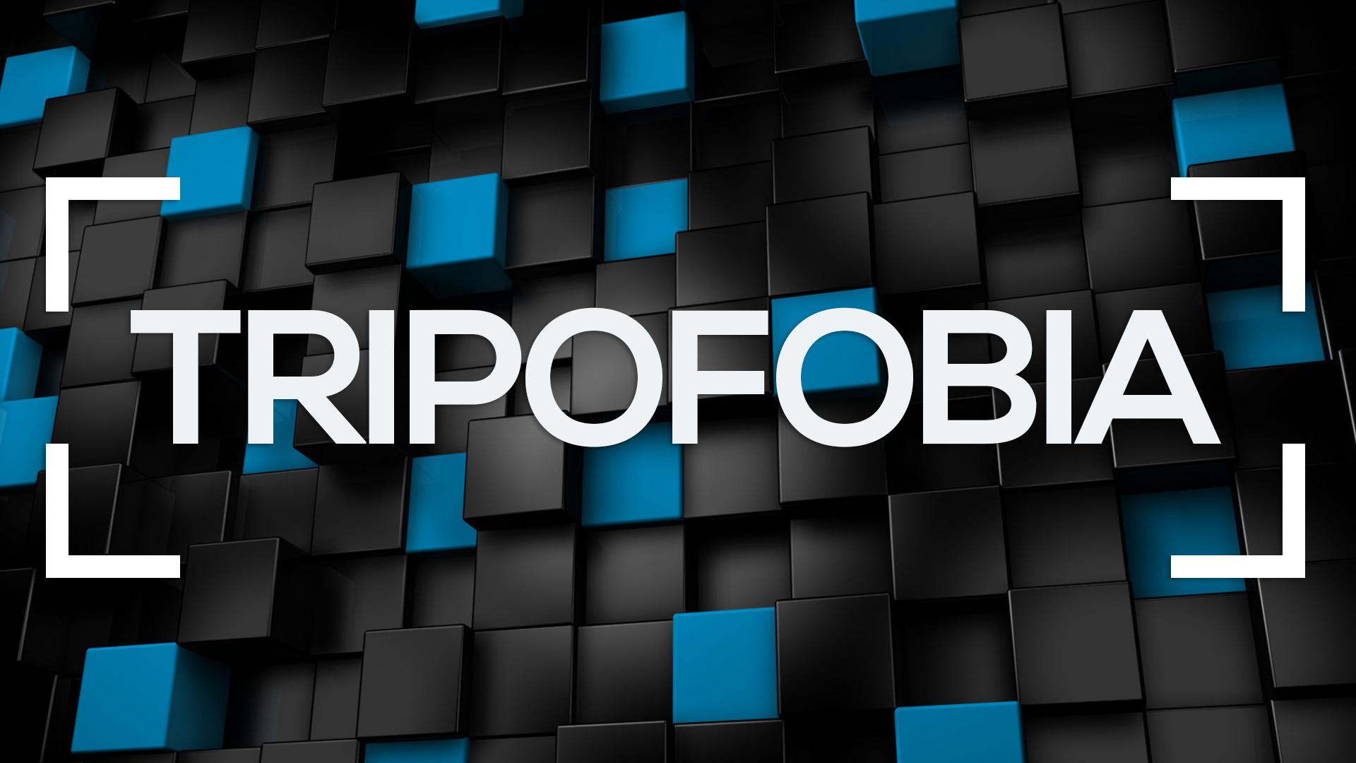 se muestran c ubos desordenados y la palabra tripofobia
